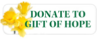 NE DD FY12 Donate to Gift of Hope button