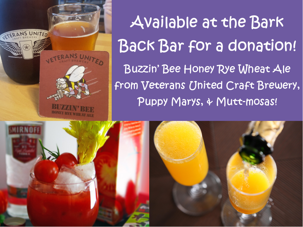 Bark Back Bar