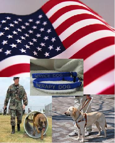 LaborDay_service Dogs