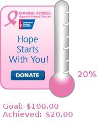 2008 Making Strides Against Breast Cancer - Port Huron, MI